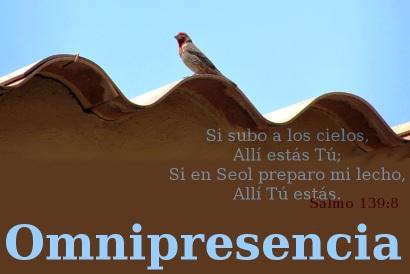 omnipresencia.jpg